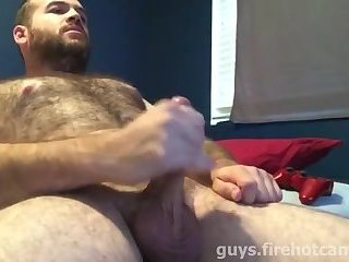 Hairy Bear Jerking and Cumming