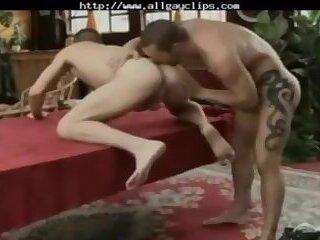 Hard Bareback Sex